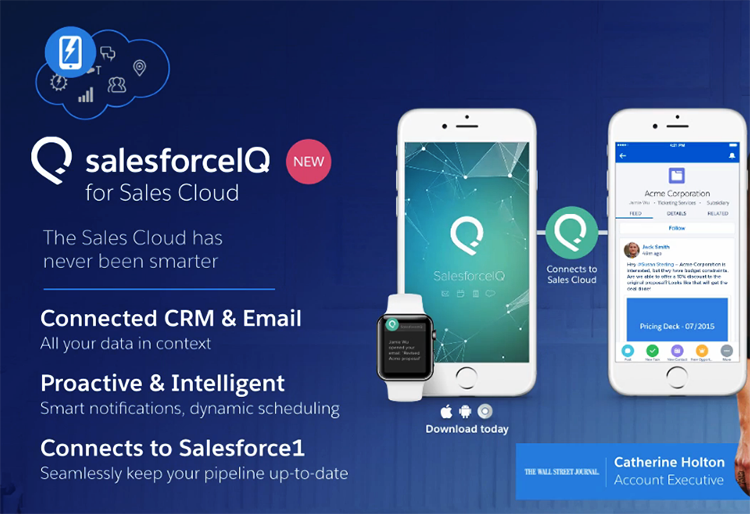 SALESFORCEIQ FOR SALES CLOUD画面