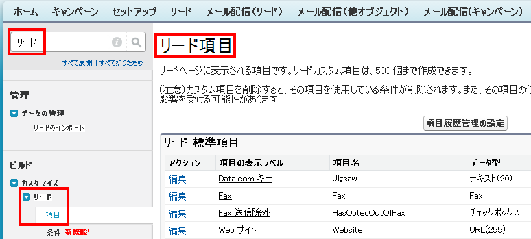 リード項目 Salesforce Developer Edition