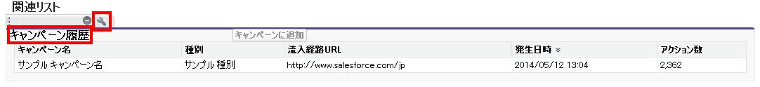 キャンペーン履歴ページレイアウトの編集 Contact Layout Salesforce Developer Edition